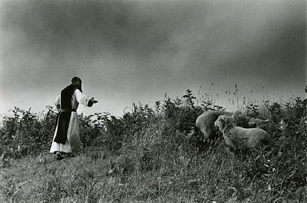 奈良原一高『「王国」より沈黙の園』 ©Narahara Ikko Archives