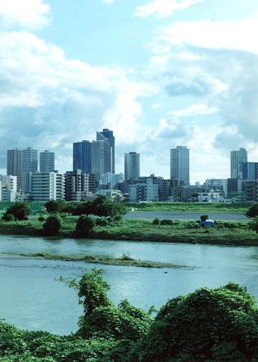 多摩川河岸から武蔵小杉駅方面を望む
