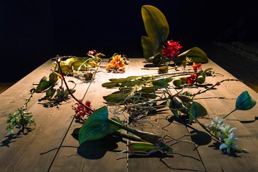 クリス・チョン・チャン・フイ『固有種』シリーズ 2015年 インスタレーション 『第8回恵比寿映像祭』 写真提供:東京都写真美術館 写真:大島健一郎
