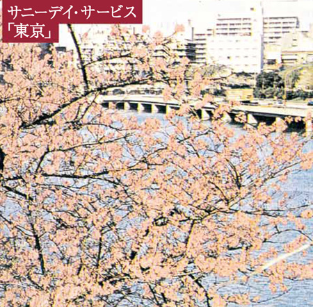 サニーデイ・サービス『東京』ジャケット