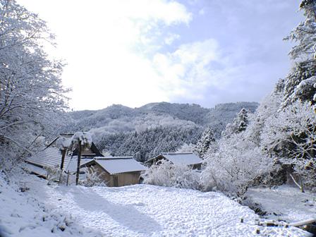 高木が暮らす家の周辺風景
