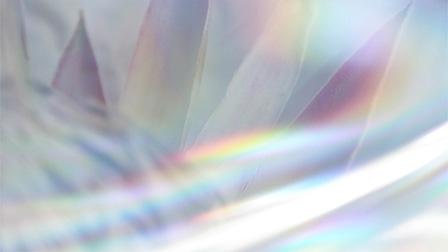 """フラワーデザイナー・篠崎恵美による、""""SHINE""""を表現した作品"""