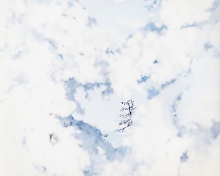『White 09, H-343』 2009年 ©Risaku Suzuki / Courtesy of Gallery Koyanagi