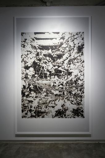 untitled(wood land)/2016/burnt paper/H2046mmxW1326mm ©KosukeIchikawa. Photo:木奥恵三