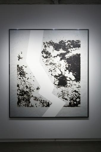 untitled(wood land)/2016/burnt paper,collage/H1535mmxW1384mm ©KosukeIchikawa. Photo:木奥恵三