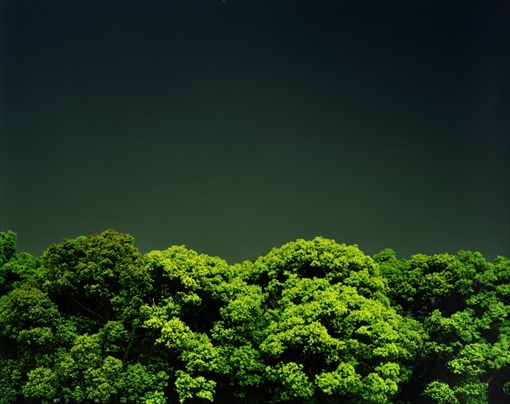 今井智己『無題』「真昼」より 2000年 東京都写真美術館蔵
