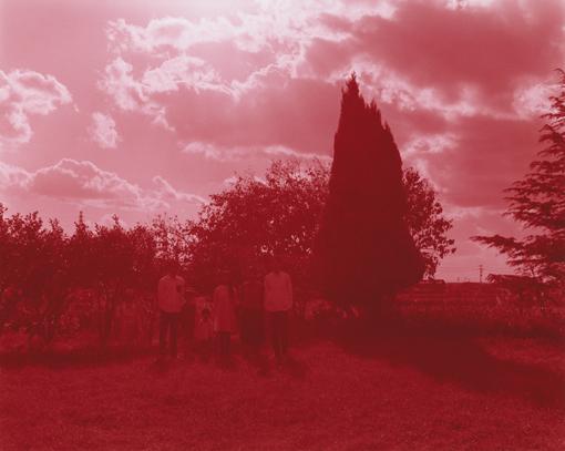 森栄喜『Family Regained: The Picnic(ファミリー・リゲインド:ザ・ピクニック)』メインビジュアル Photo:Eiki Mori Courtesy of KEN NAKAHASHI